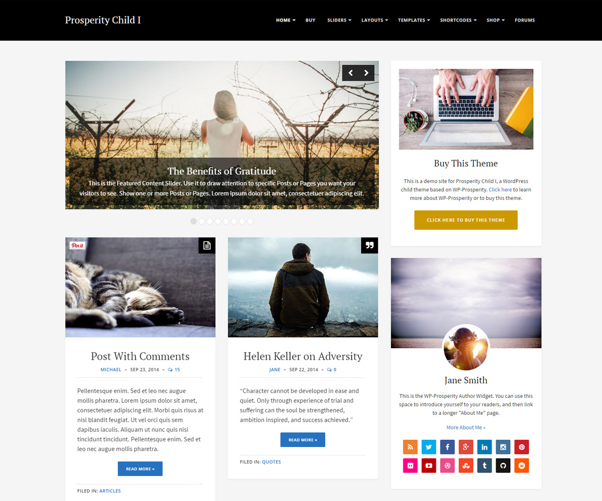 Premium wordpress themes wp prosperity for Create your own wordpress theme from an html template